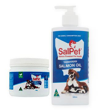 salmon fish oil for dogs